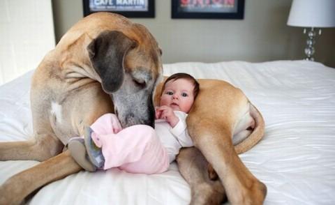 Поймут те, кто нянчил младенцев. Безумная изобретательность.