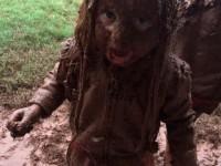 Дети в грязи. 17 фотографий детей, чья прогулка явно удалась
