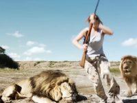 Лев отомстил браконьерам за смерть собрата: неожиданный финал охоты попал на видео