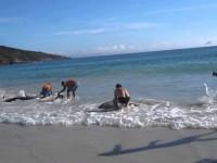 Он просто снимал море и пляж, как вдруг случилось нечто немыслимое!