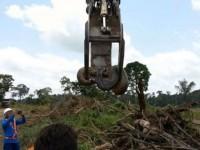 В Бразилии обнаружили гигантскую анаконду, масса которой примерно 400 кг