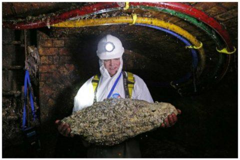 Фатберги – бич экологии и проблема современной канализации