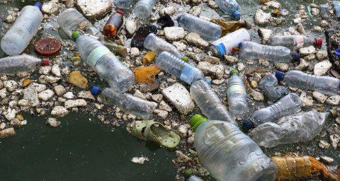 Скопление мусора в Тихом океане достигло размеров Франции