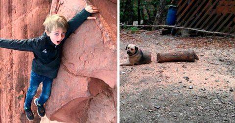20 странных снимков, происходящее на которых с первого раза не так-то просто понять