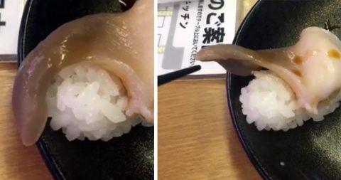 Свежее суши ожило и попыталось сбежать из тарелки
