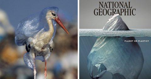 Планета или пластик? National Geographic опубликовал шокирующие фотографии мусора, в котором утопает наша планета